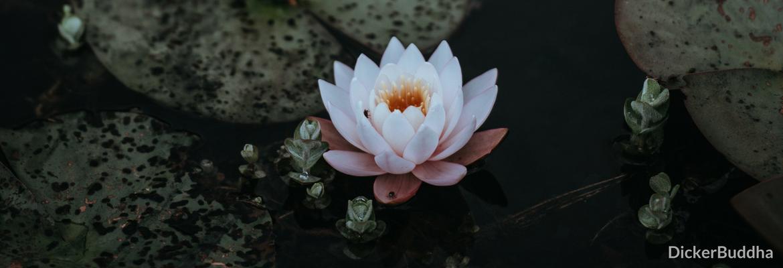 Mantra Meditation Anleitung