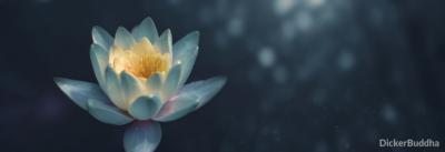 Mit ätherischen Ölen die Meditation unterstützen